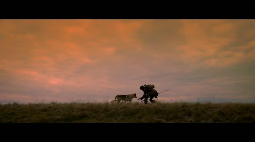#电影最前线#《阿尔法:狼伴归途》荒野求生电影千万不要错过