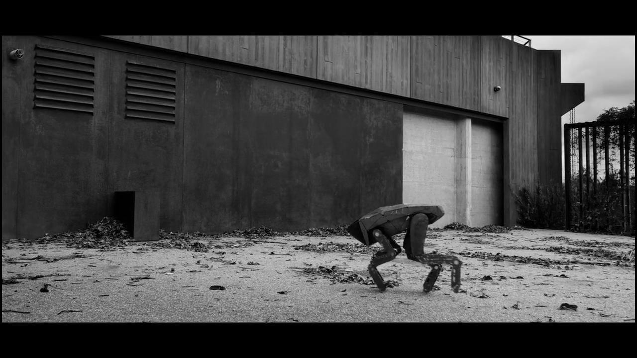 #经典看电影#未来世界被机器狗统治,人类成了被捕杀的猎物,四处逃命