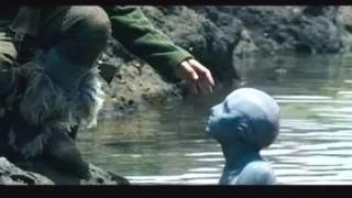 #经典看电影#男子在孤岛工作久了,心理变得扭曲,对美丽的鱼人妹妹下手了