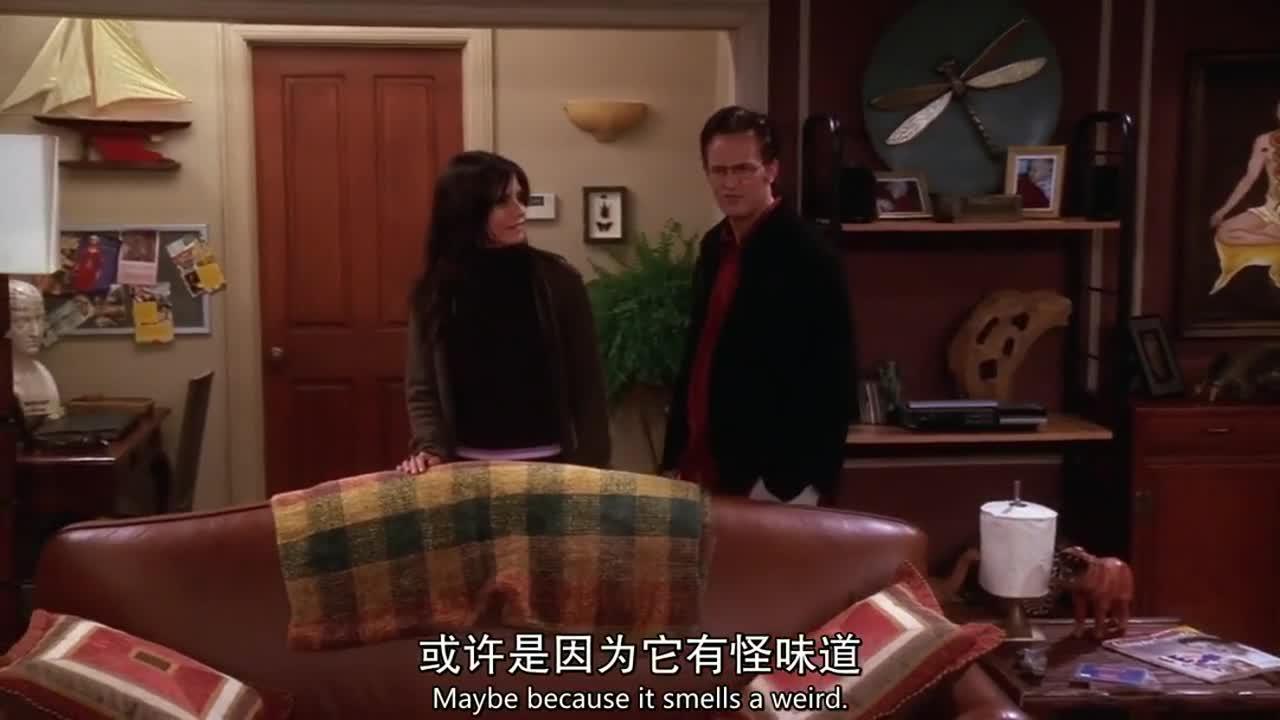 女子打电话给红衣女子,很生气的问她,为什么沙发上有一只狗