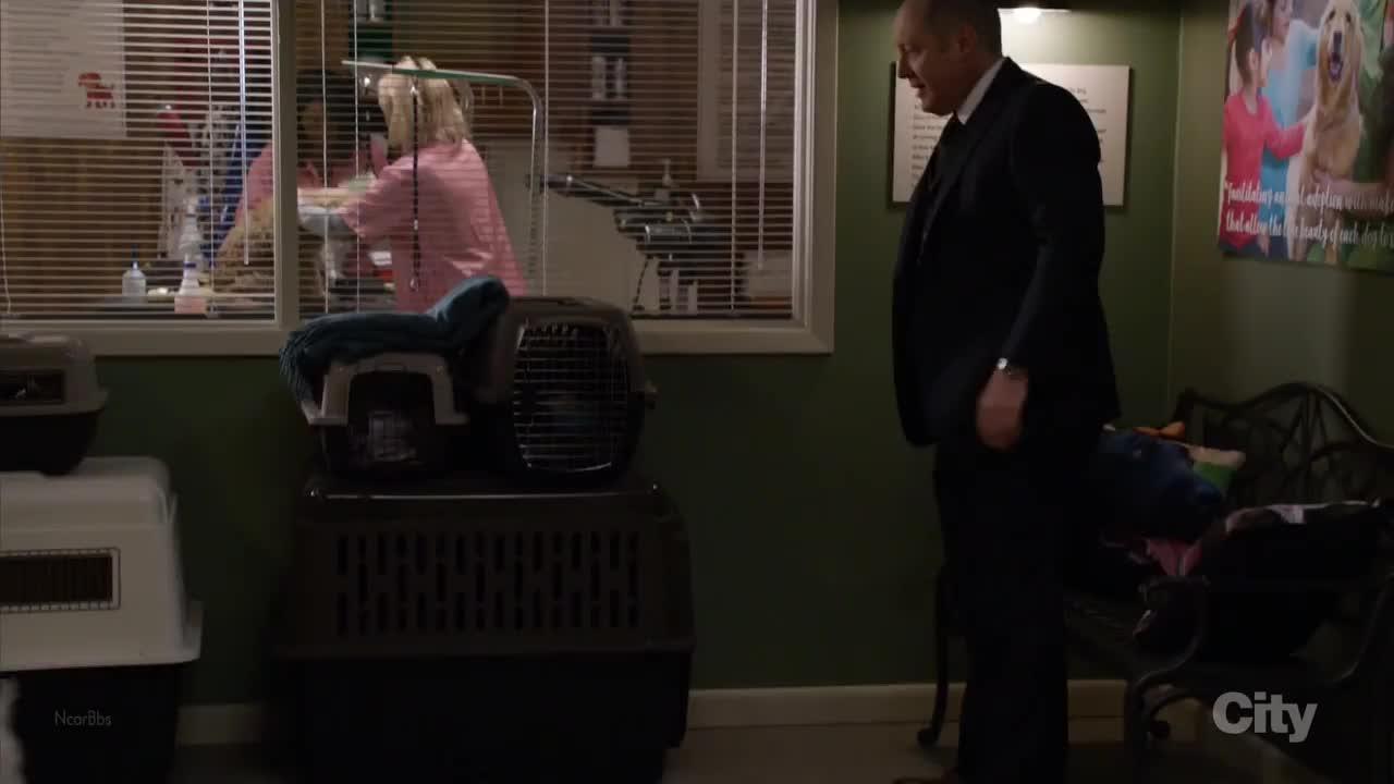 辛格尔顿警探确信是伊丽莎白杀了纳瓦罗,潜入证物室偷走抹布