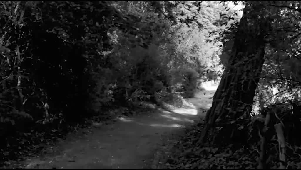 女人顺着林间小道,来到一栋大房子前,女子准备进屋