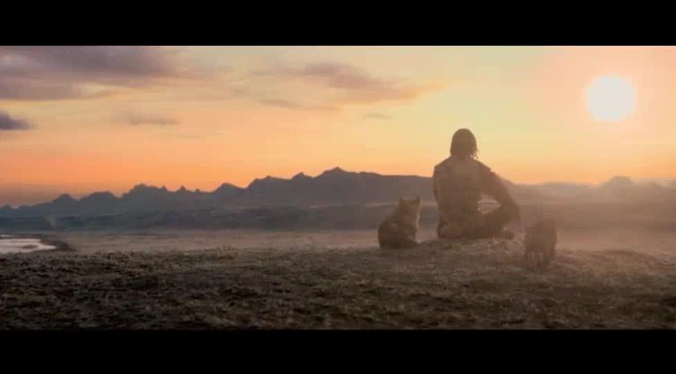 落日的余晖中小狼发出阵阵的长嚎