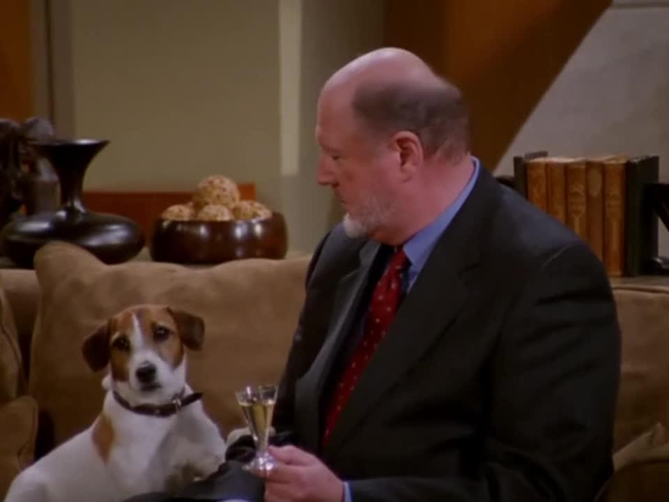 令人惊讶,狗狗竟然搭上客人手臂,客人表情极其精彩