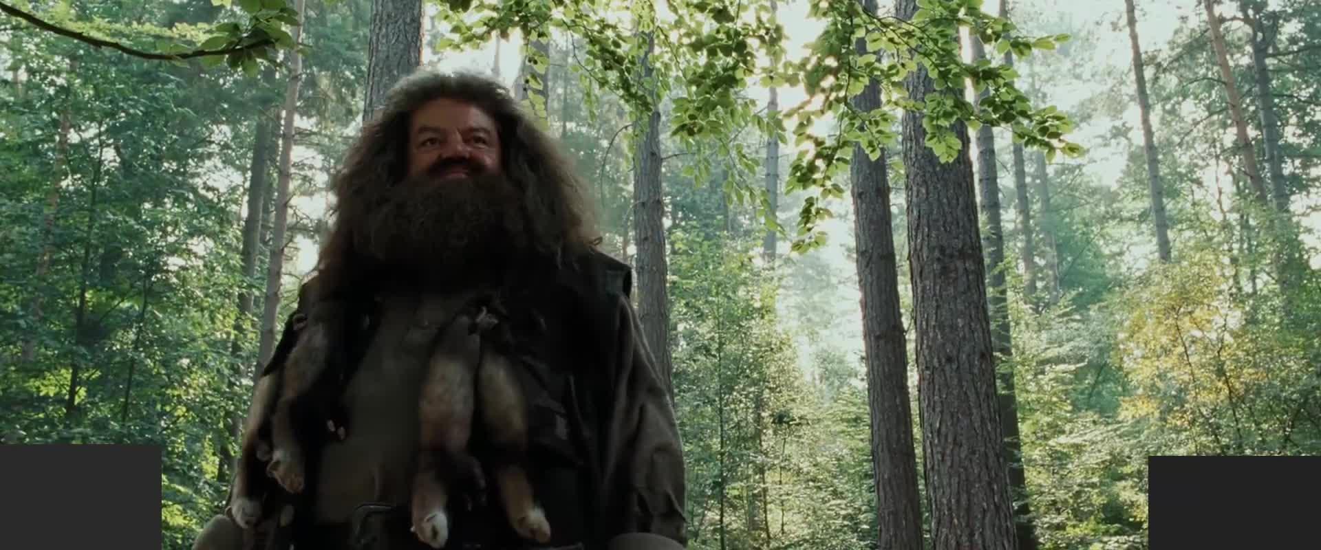 究竟谁是摄魂怪,哈利能战胜怪兽吗