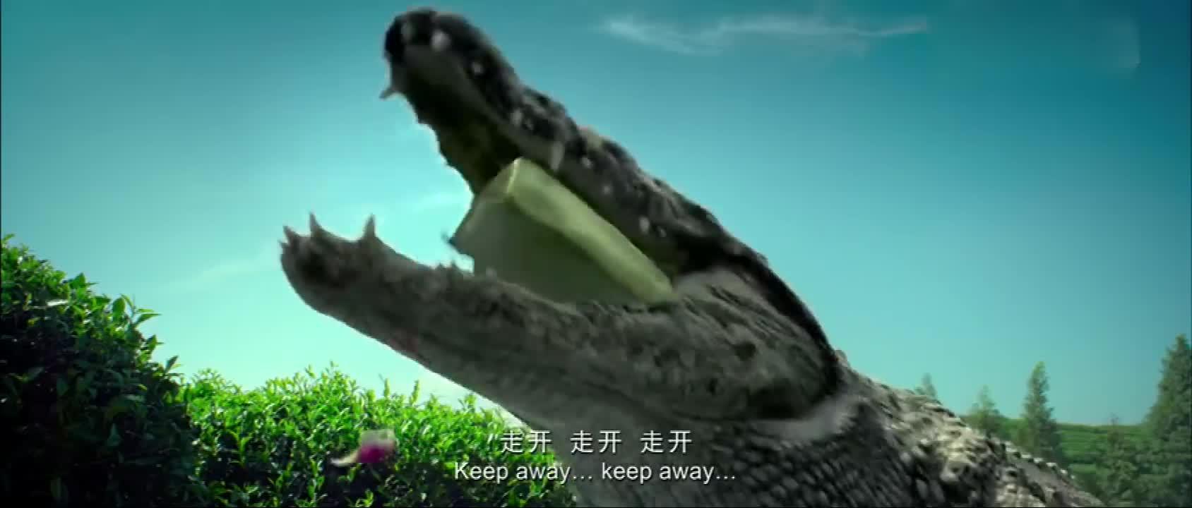 美女遭巨型鳄鱼打劫,十万欧立马化为泡影,找都找不回来