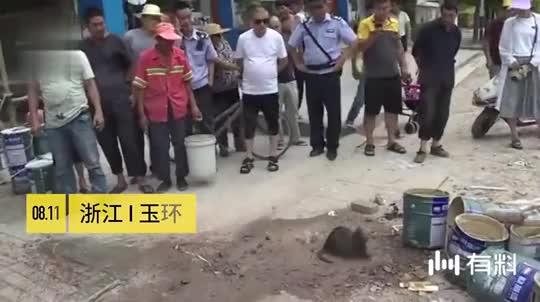 街头惊现2尺长大老鼠过马路,路人:这是个啥东西