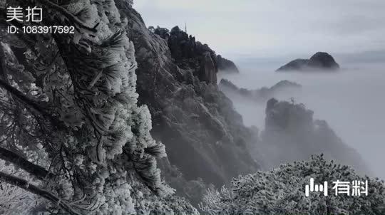 醉美黄山:松树相间云海缭绕,独领天下奇山