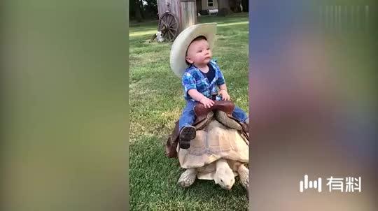 搞笑动物:成精了,千年的王八也能骑了,这速度比蜗牛快多了