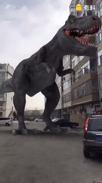 惊现一条巨龙