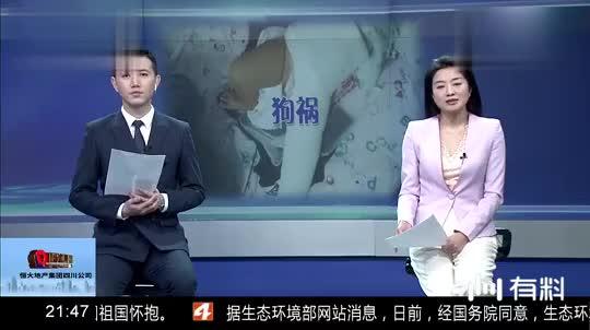 狗祸:女儿被狗撞成十级伤残!狗主人拒赔,现已被拘留