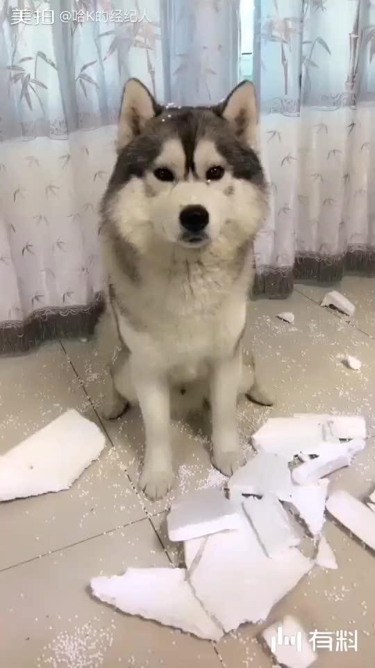 我不懂?你为啥拆一半不拆了啊?